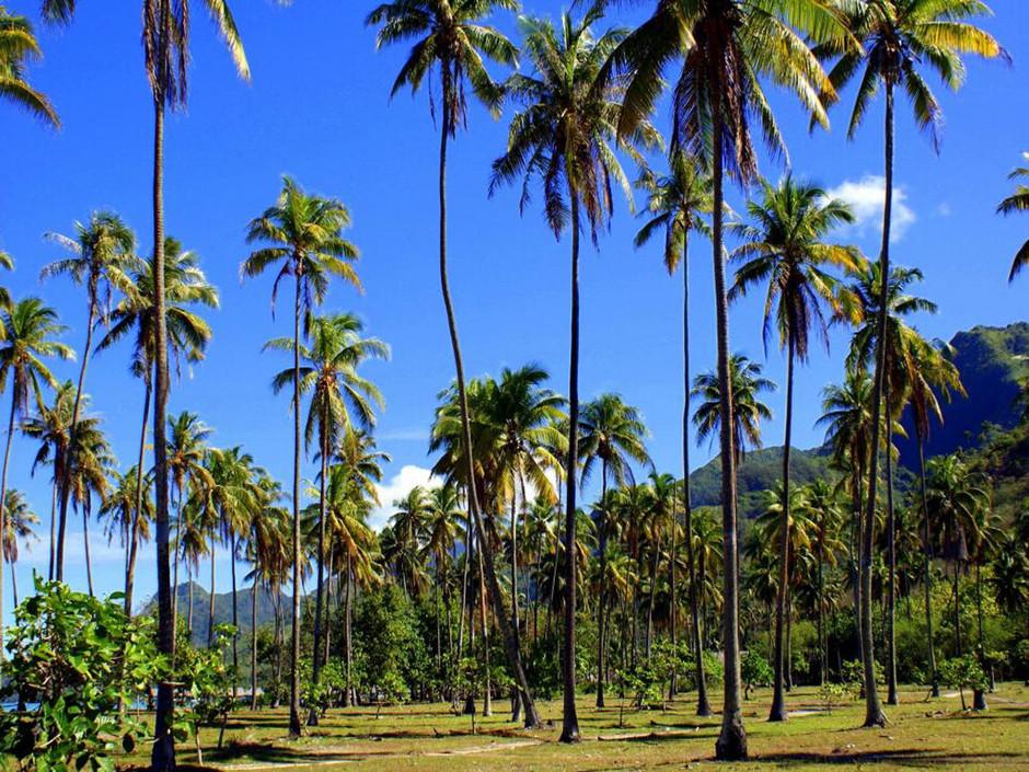 Polynésie Française, Tahiti
